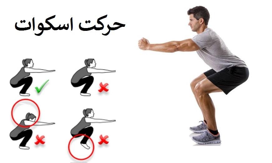 ورزش اسکوات برای لاغری شکم