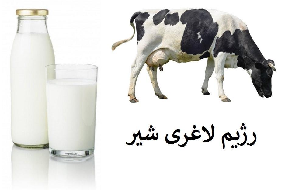 رژیم لاغری شیر ، و عوارض و فواید آن برای بدن